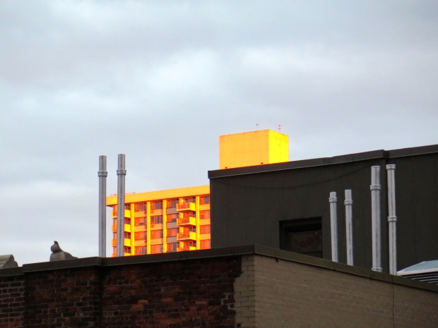 The view facing east, sun reflecting off of the buildings.