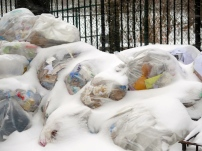 oops, no recycle pick-up when it snows. All sanitation workers are doing snow removal/sand/salt