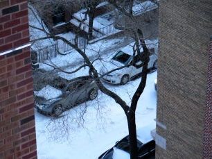 Alternate side of the street parking suspended for the day--happy car owners!
