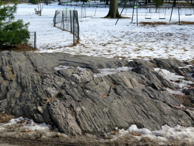 Most of the rocks in Central Park were deliberately chosen and placed in the plans.