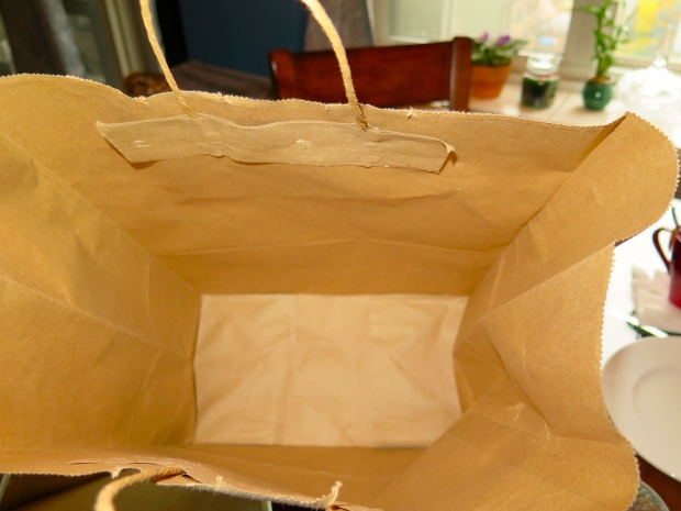 Paper bag from a thrift store.