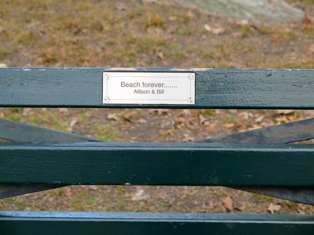 At long last, I now have a favorite park bench.