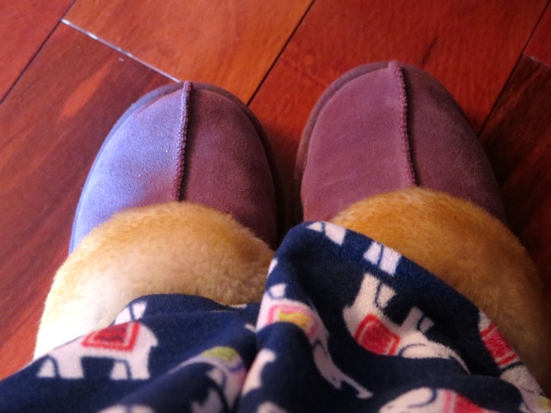 Conflicted Slippers